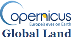 Logo Copernicus + Global Land 2
